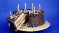 Michelle Holzapfel, Birthday Cake, 1988