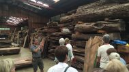 Ru, Mira's son, leading a tour of the wood storage. Notice that the trees are kept intact after they are cut.
