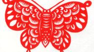 Yumei Hou, Butterfly