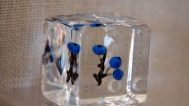 Paul Stankard, glass cube (blueberry)