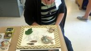 Katie was inspired by hands and botanical drawings in her collages and jewelry
