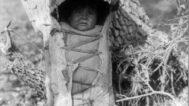 Apache cradle basket