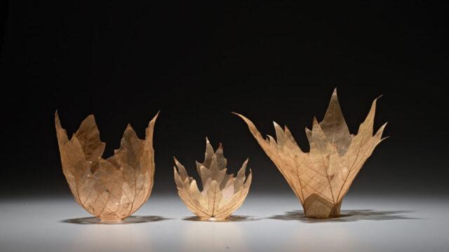 Kay Sekimachi Leaf Bowls